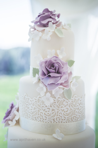 Lace And Purple Rose 2