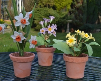 Sugar Spring Flowers & Pots